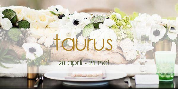 taurus-wedding-880782168844f1b8e16f939b0a755d53.jpg