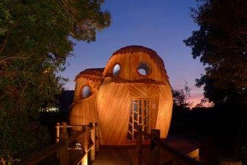 Wow! Kamu Bisa Tidur Gratis di Kabin Burung Hantu Ini