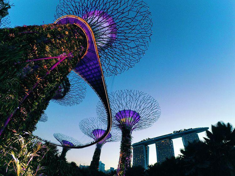 singapore-2259805-960-720-f803a4e1867b27c753112bff7e393b9d.jpg