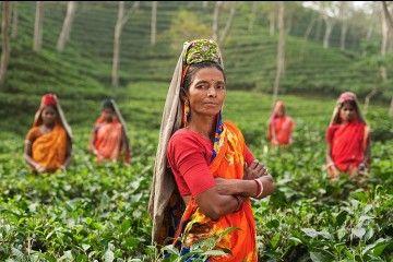 5 Fakta yang Perlu Kamu Tahu Jika Berkunjung Ke India