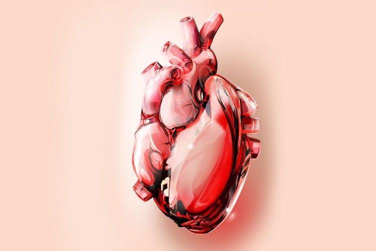 Lakukan 3 Tes Ini untuk Mendeteksi Penyakit Jantung