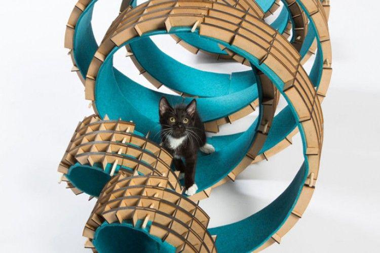 Prihatin dengan Kucing Liar, Para Arsitektur Rancang Instalasi Unik Ini