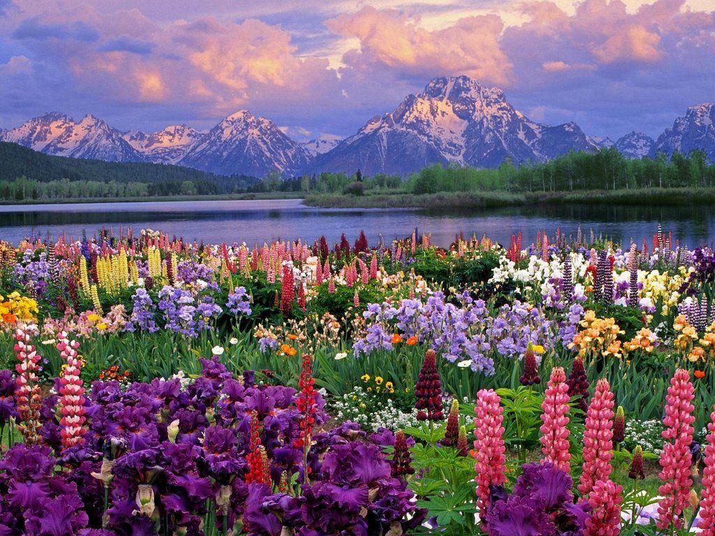 Seperti di Negeri Dongeng, Ini 10 Destinasi Penuh Warna yang Ada di Dunia