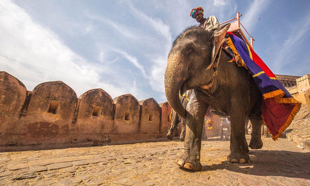 Jadi Destinasi Pilihan Nikita Willy, Ini 11 Alasan Kenapa Kamu Harus Mengunjungi India