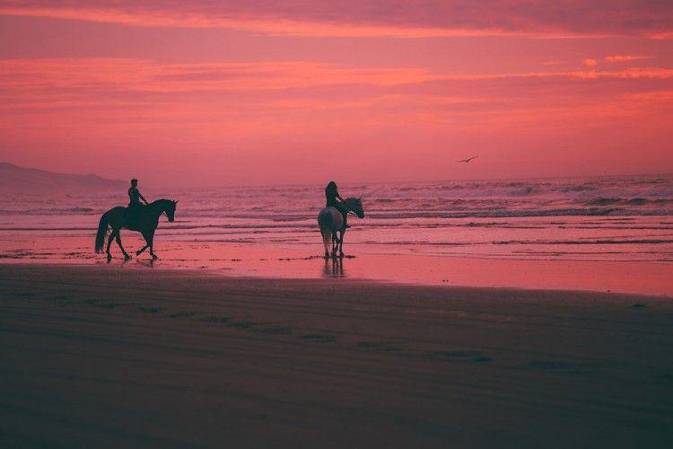 9 Pantai Berpasir Pink Ini Cocok Buat Destinasi Romantis Saat Valentine