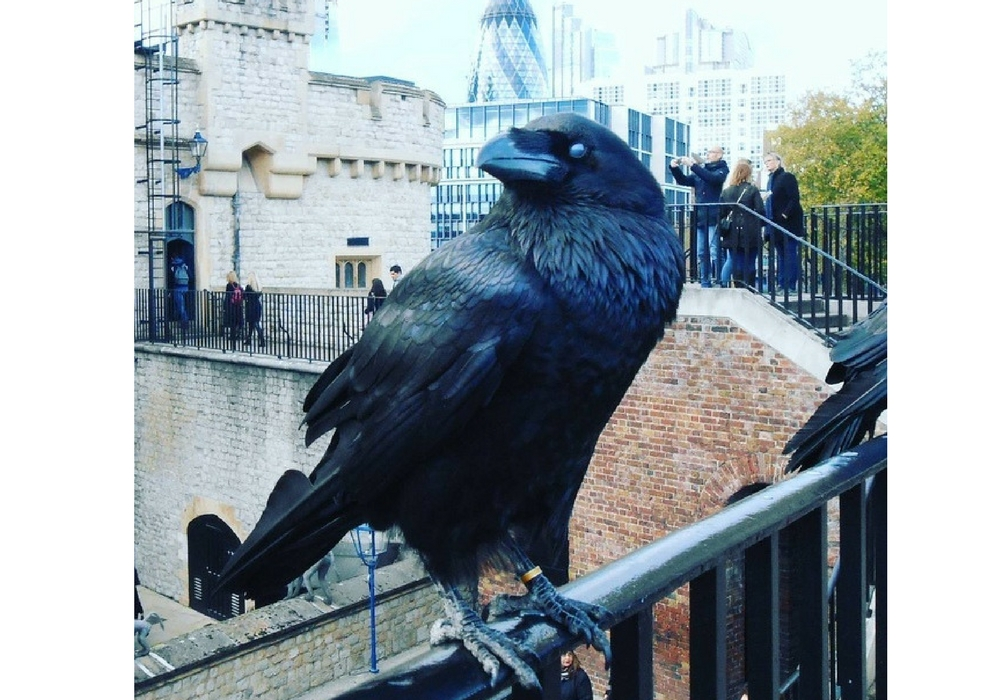 5 Keuntungan yang Kamu Dapat Saat Berkunjung ke London