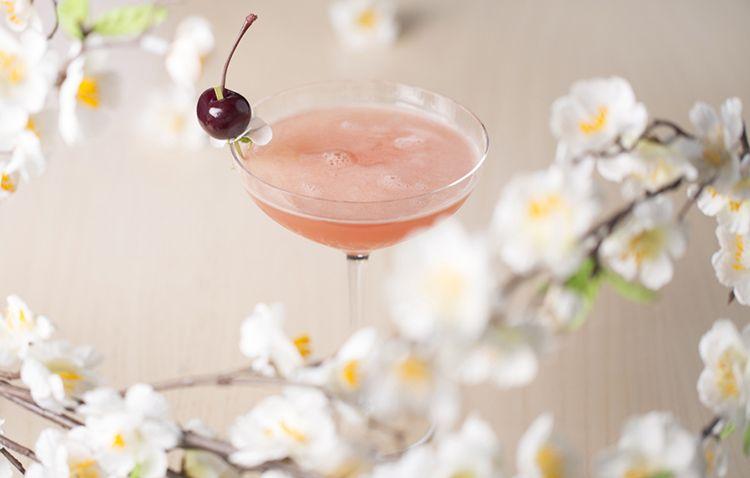 sake-no-hana-sakura-cocktail-98d79caa338b52801abd34a9d0b08acc.jpg