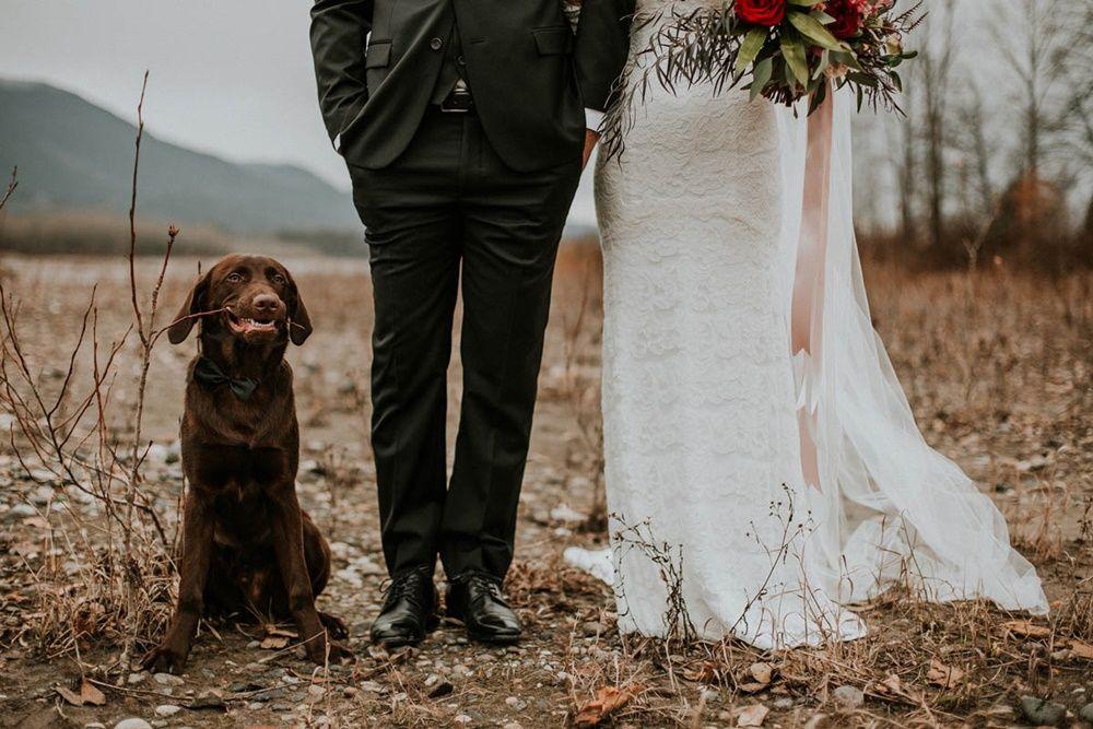 10 Foto Paling Mengharukan di Dunia tentang Pernikahan