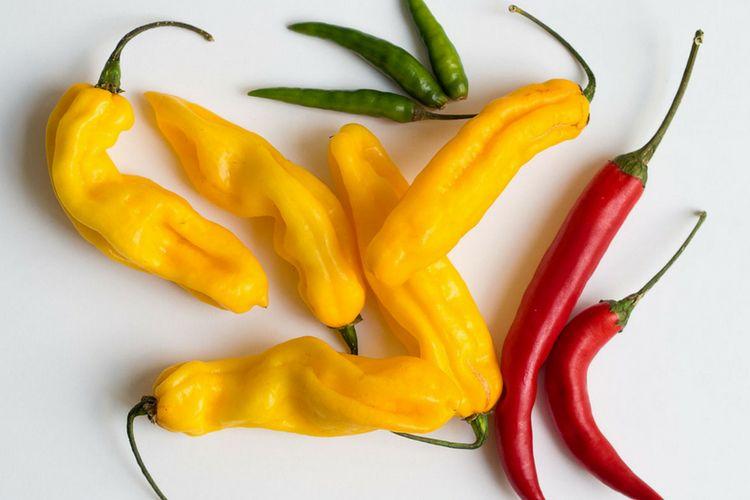 5 Makanan yang Wajib Kamu Konsumsi untuk Mengusir Lemak