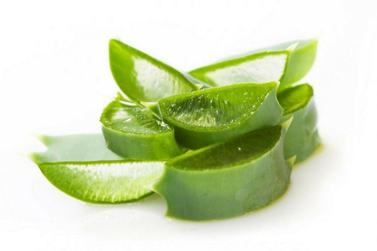 7 Bahan Alami yang Dapat Mengatasi Masalah Rambut Bau