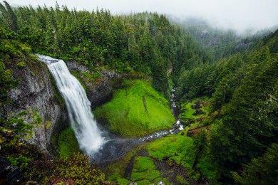 10 Cara Ini Wajib Kamu Lakukan Saat Tersesat di Hutan!