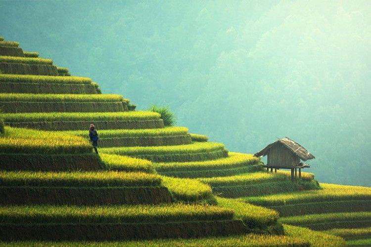 Ini Alasannya Kenapa Kamu Tak Pernah Bosan ke Bali
