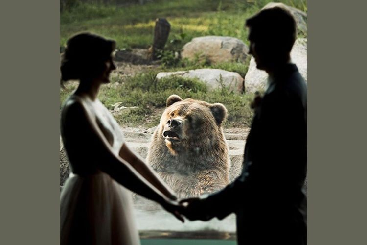 Gagal Romantis! 15 Foto Pernikahan Ini Justru Bikin Ketawa