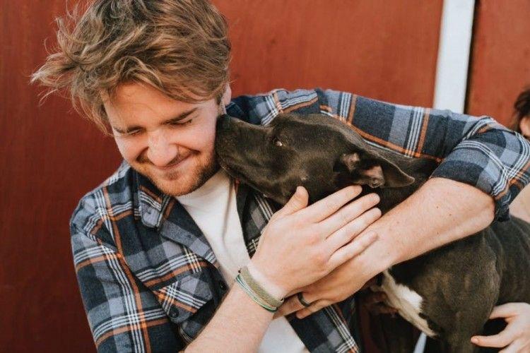 Walau Kelihatan Tangguh & Aktif, Pit Bull Bukan Anjing yang Ganas lho