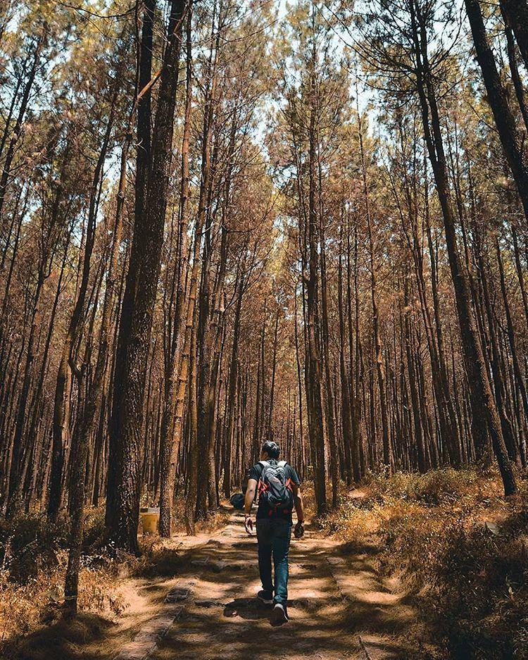 10 Potret Wisata Alam di Semarang yang Harus Kamu Kunjungi Tahun ini