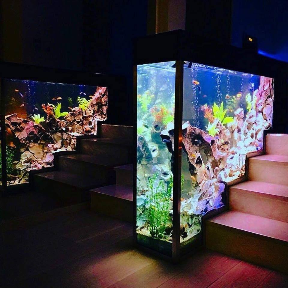 5300 Gambar Design Aquarium Rumah Paling Keren Untuk Di Contoh