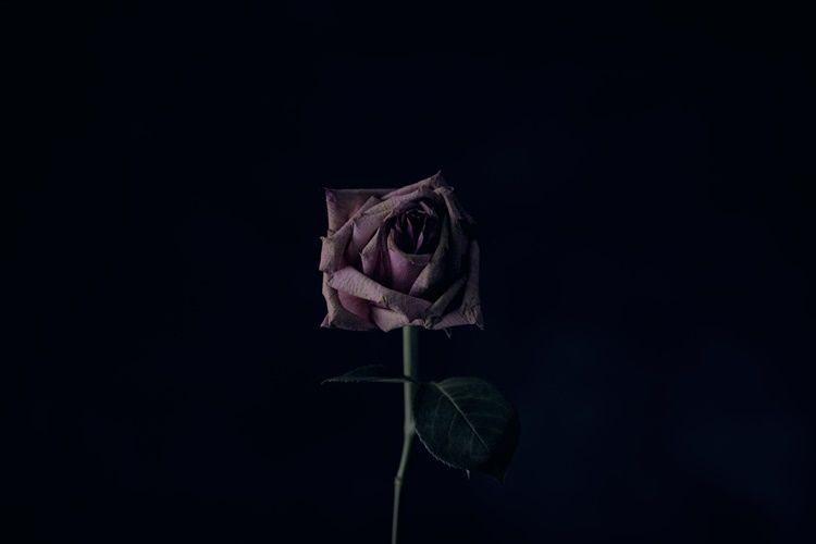 Unduh 72+ Background Romantis Islami HD Terbaik
