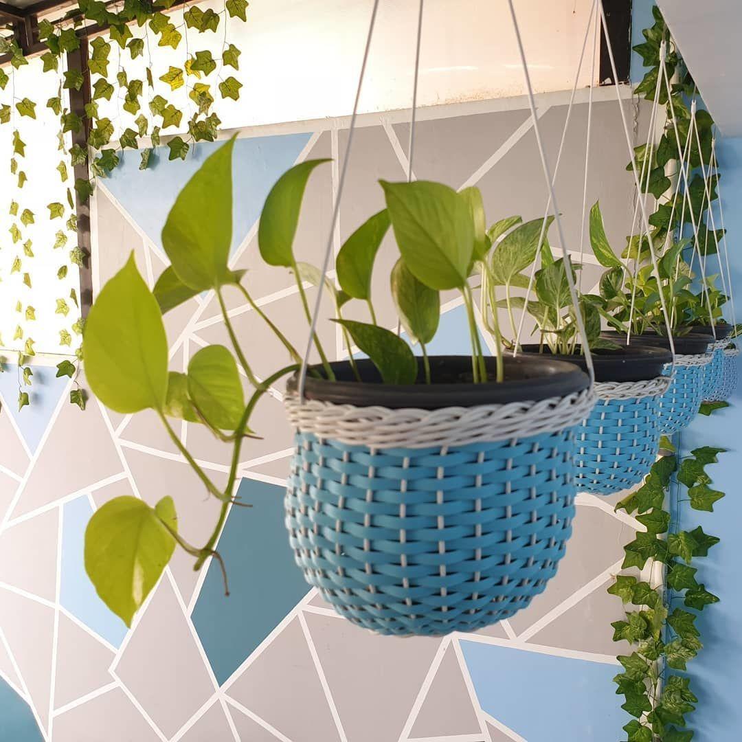 Inspirasi Desain Rumah Anti Polusi dari Akun Instagram Asrija