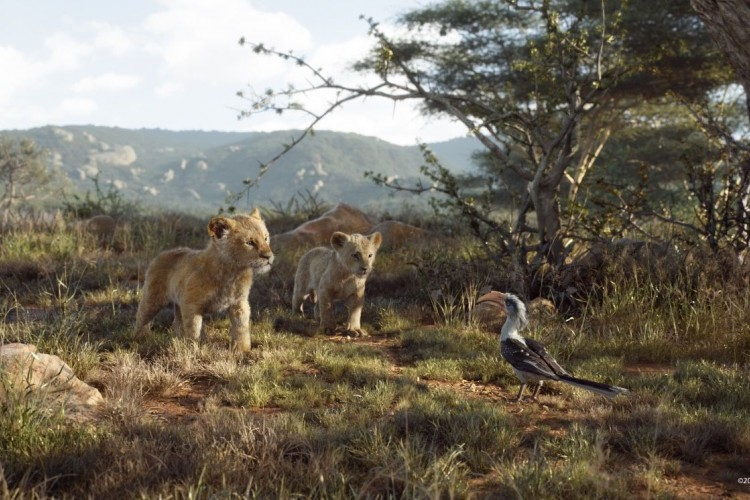 Review Film The Lion King: Live Action yang di Luar Ekspektasi