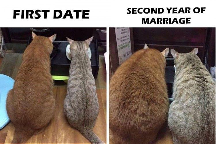 15 Gambar Lucu Menjelaskan Realitasnya Hubungan Pernikahan