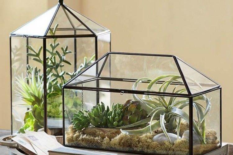 11 Desain Terrarium yang Memperindah Rumahmu