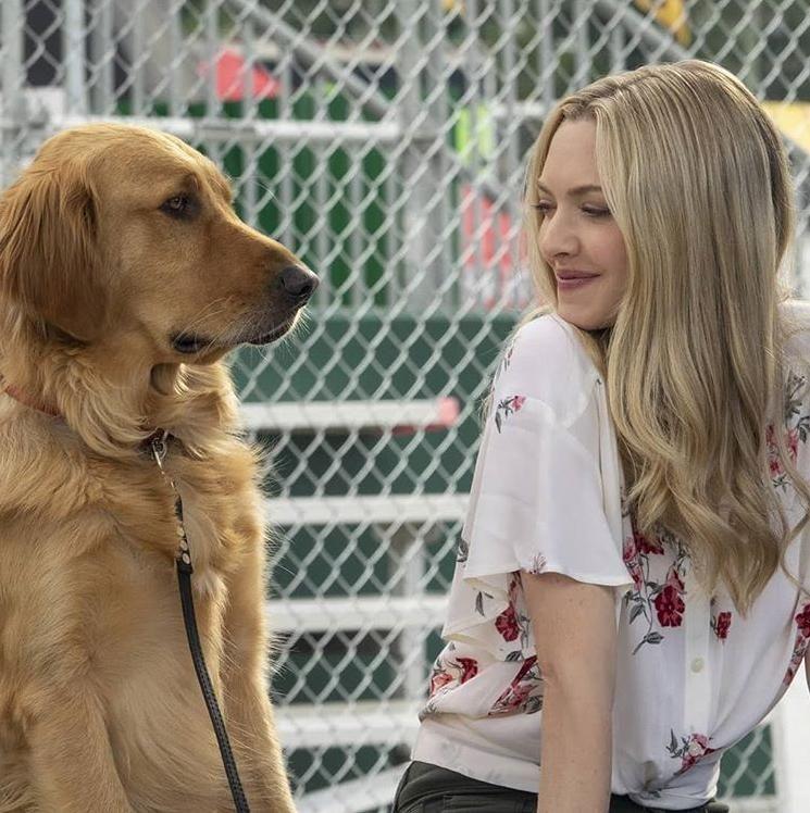 15 Film Hollywood Tayang Agustus 2019 yang Wajib Kamu Tunggu
