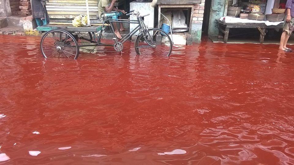 7 Hujan Paling Aneh yang Pernah Terjadi di Dunia, Penyebabnya Beragam!
