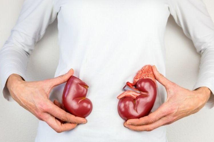 Waspadai, Ini 5 Gejala Penyakit Infeksi Ginjal