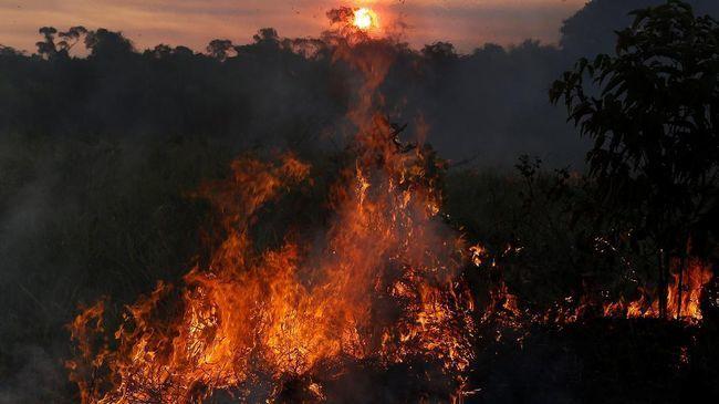 Mengerikan, Kebakaran di Hutan Amazon Sampai Terlihat di Ruang Angkasa