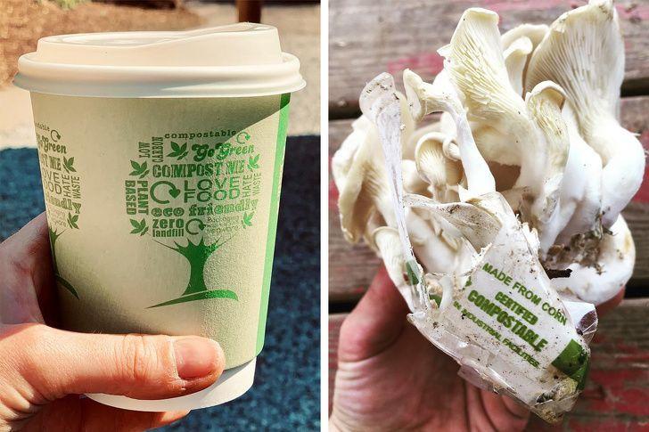 Gunakan 15 Items Eco-Friendly Ini Maka  Kamu Turut Menyayangi Bumi