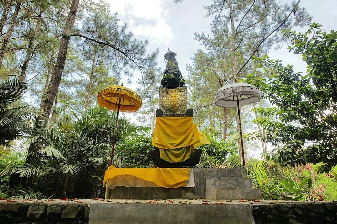 Sejarah dan Hal di Luar Nalar yang Terjadi di Rowo Bayu Banyuwangi