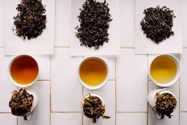 Coba Konsumsi 7 Jenis Makanan & Minuman untuk Mencegah Kanker Kulit