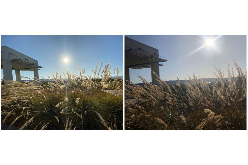 Sistem Kamera Baru, Ini Hasil Foto Menggunakan iPhone 11