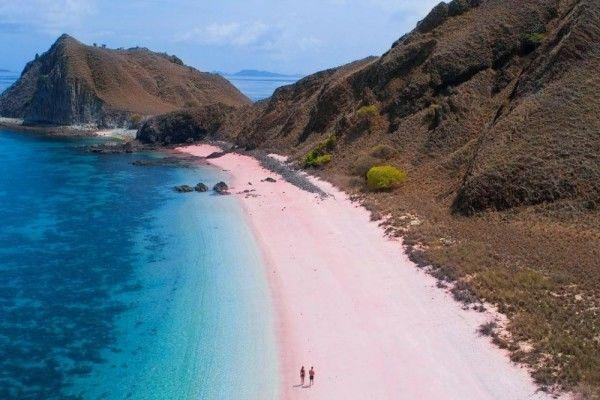 Tempat Diving Populer di Indonesia