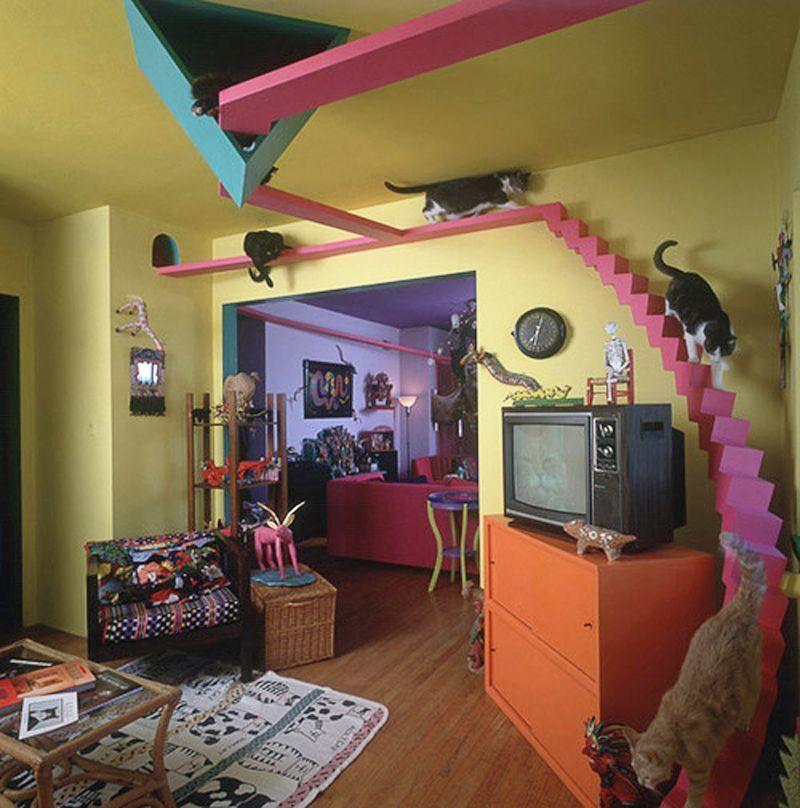 Rumah Idaman untuk Para Pecinta Kucing, Ini 8 Inspirasinya