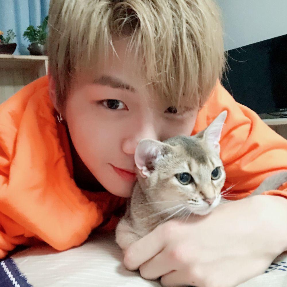 Bikin Gemas! 11 Potret Menggemaskan Kang Daniel Bersama Kucing