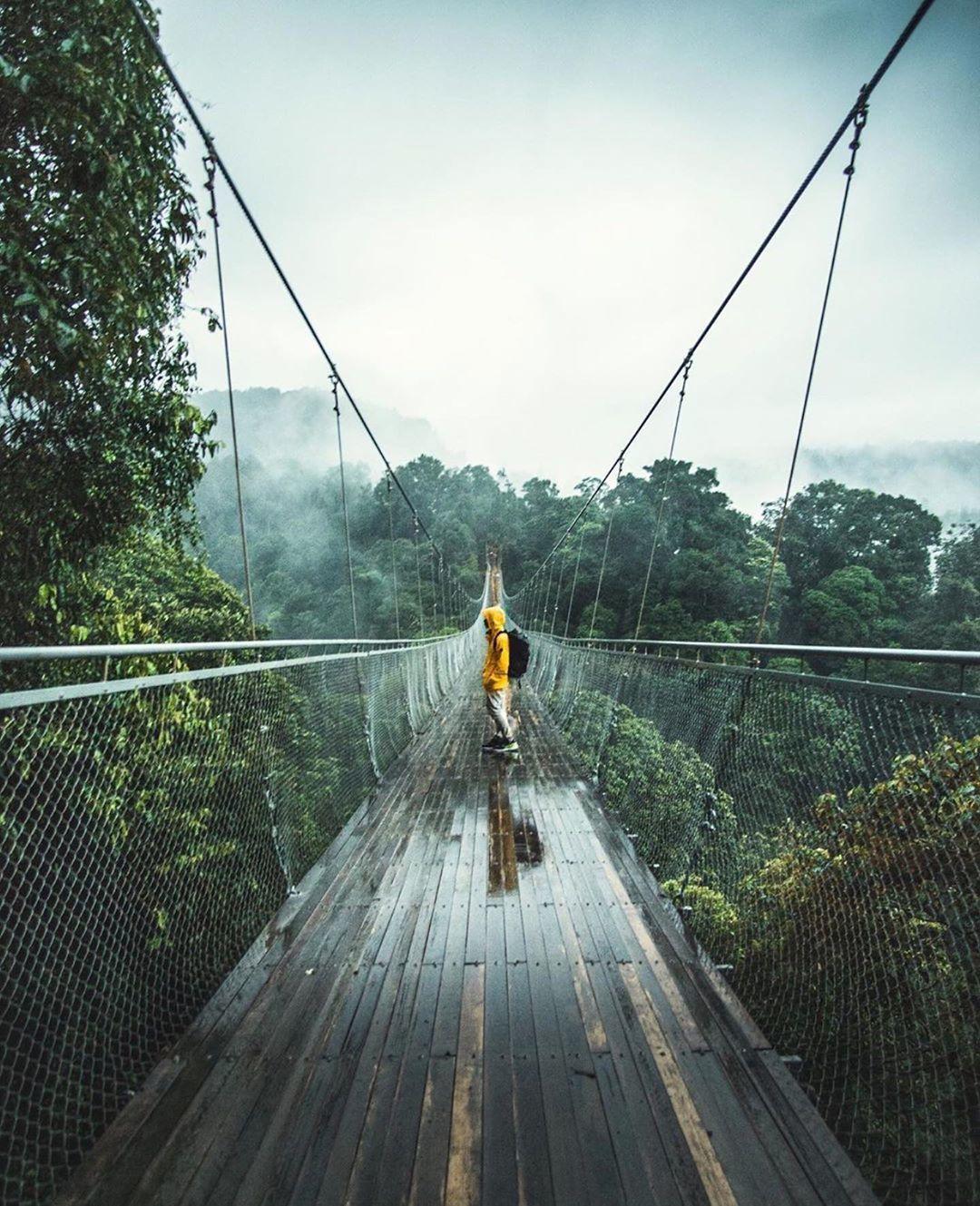 Alasan Kenapa Kamu Harus Travelling di Alam