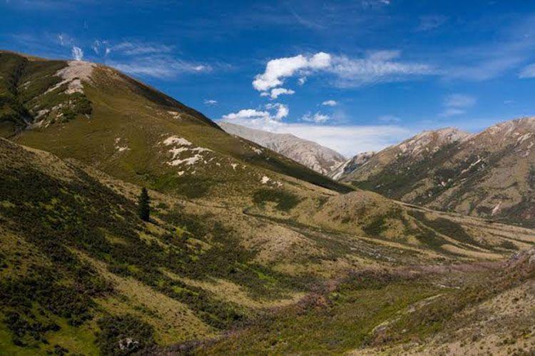 5 Fakta Unik Taman Nasional Lorentz yang Jadi Google Doodle Hari Ini