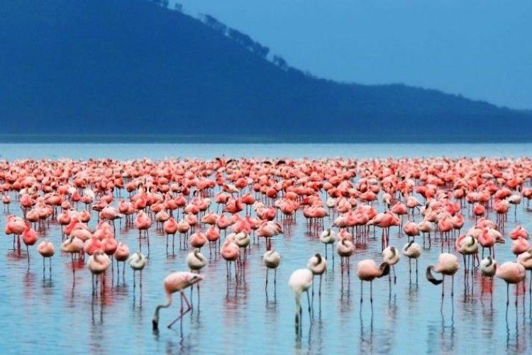 15 Potret Wisata Alam Paling Indah di Dunia, Serasa di Negeri Dongeng