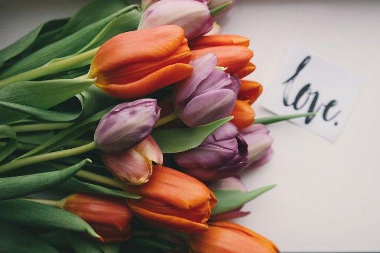 10 Kutipan Cinta Nan Romantis untuk Kamu yang Dimabuk Asmara