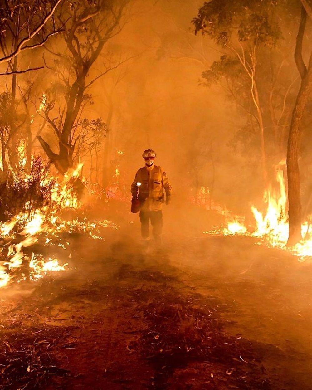 Memprihatinkan, Inilah Kondisi Australia yang Tengah Dilanda Kebakaran