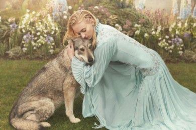6 Selebriti Penyayang Binatang ini Jatuh Hati Hewan Filmnya