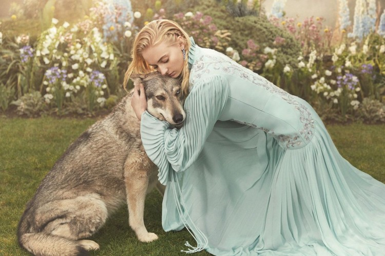 6 Selebriti Penyayang Binatang ini Jatuh Hati dengan Hewan di Filmnya