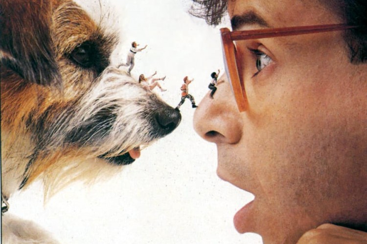Siap-Siap! Reboot film Honey, I Shrunk the Kids Akan Hadir