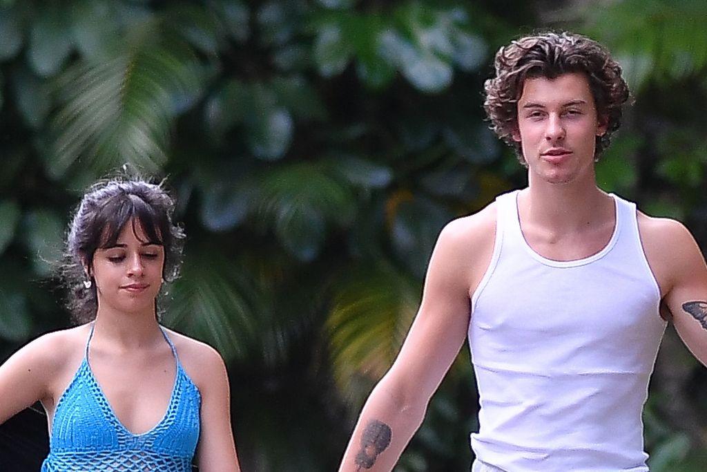Video Camila Cabello & Shawn Mendes Jalan Bareng Jadi Viral, Ada Apa?
