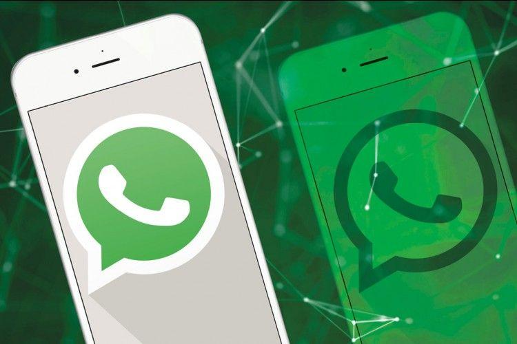 9 Tanda Akun WhatsApp Kamu Sedang Diretas, Begini Cara Mengatasinya