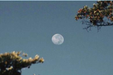 Saksikan Gerhana Bulan Penumbra 6 Juni 2020 Dini Hari