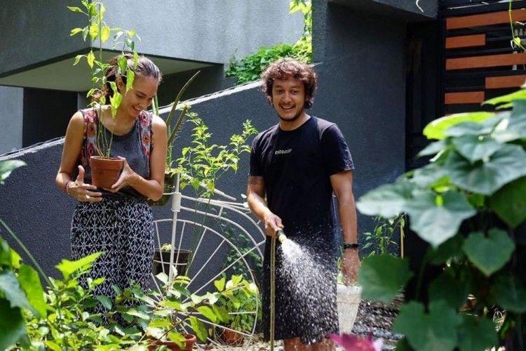 Produktif, 10 Selebritas Ini Isi Waktu #DiRumahAja dengan Berkebun