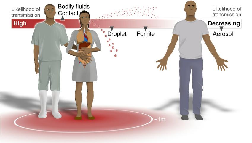 Bukti Baru, WHO Akhirnya Akui Virus Corona Bisa Menyebar Lewat Udara