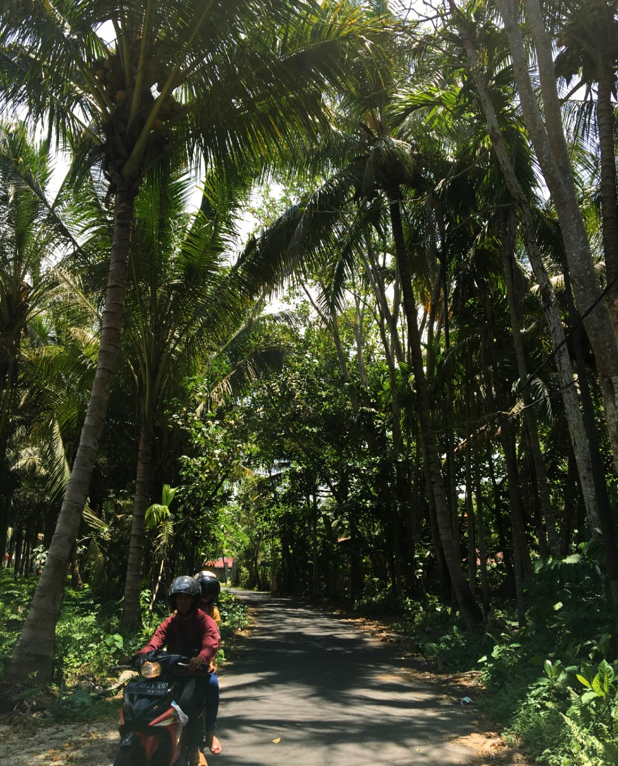 Ini 7 Alasan Mengapa Krui Sama Menyenangkannya dengan Bali